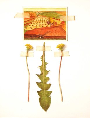 American Sublime--Dandelion.jpg